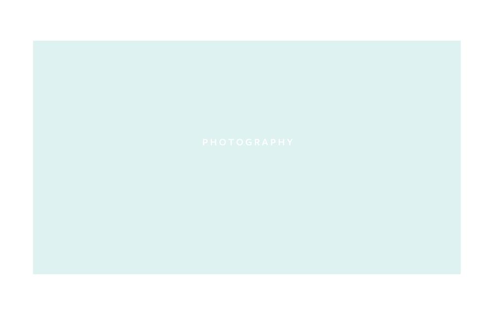 2016_BRANDGUIDELINES_logoexpl_sans37.jpg