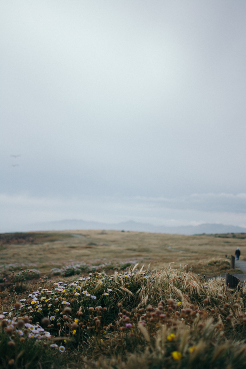 Cali Adventure-45.jpg