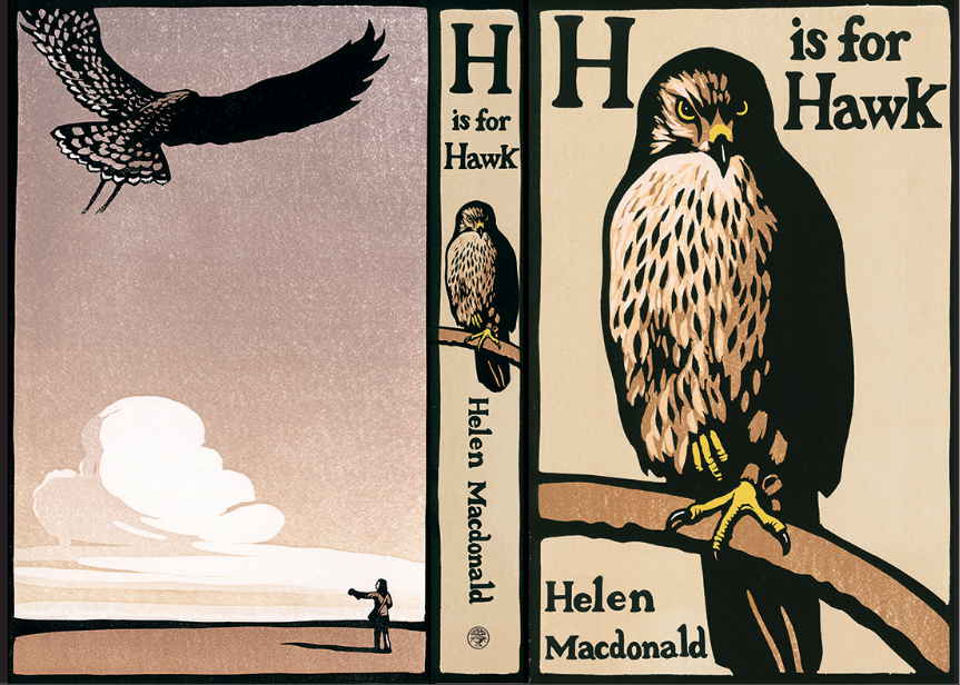 H Is For Hawk is a very good book. (Somewhat jealous of the writer, so yes, it is very good!) There are some spooky things about it that I don't want to discuss here, but: spooky. I saw a hawk in Massachusetts last month. They've between the spirit world and our world, legend has it. It makes some sense.