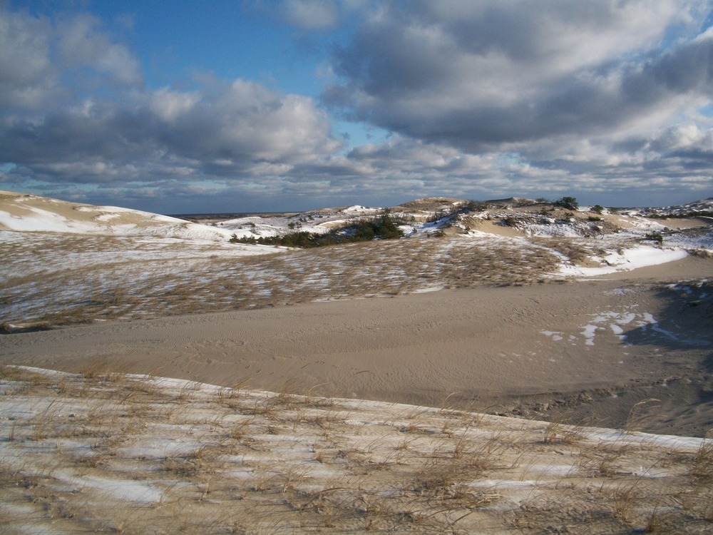 Provincetown Dunes in Winter, 2010