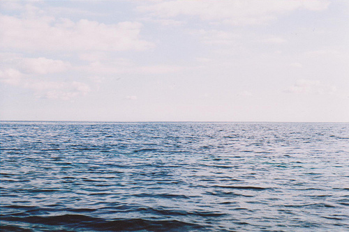 jessieflux :     I miss the ocean so fucking much, miss sea air and seals off Wellfleet and tracking the days by the passages of the ferry. Seeing the water from my window, the neighbor's flag snapping in the wind, sand in the bottom of my bed. Eating on the porch, the perfect clear light in the mornings. Walking down Kalmus at dusk, picking blackberries and sea roses,all the windsurfers milling around the parking lot with their wetsuits peeled off to the hips. Swimming in the harbor, swimming in the pond, that deep silence underwater. Standing on the beach at 3 am with a gin and tonic looking out at the water and the small light at the end of the jetty, the coast curving to the left, the Kennedy compound glowing silent in the dark.