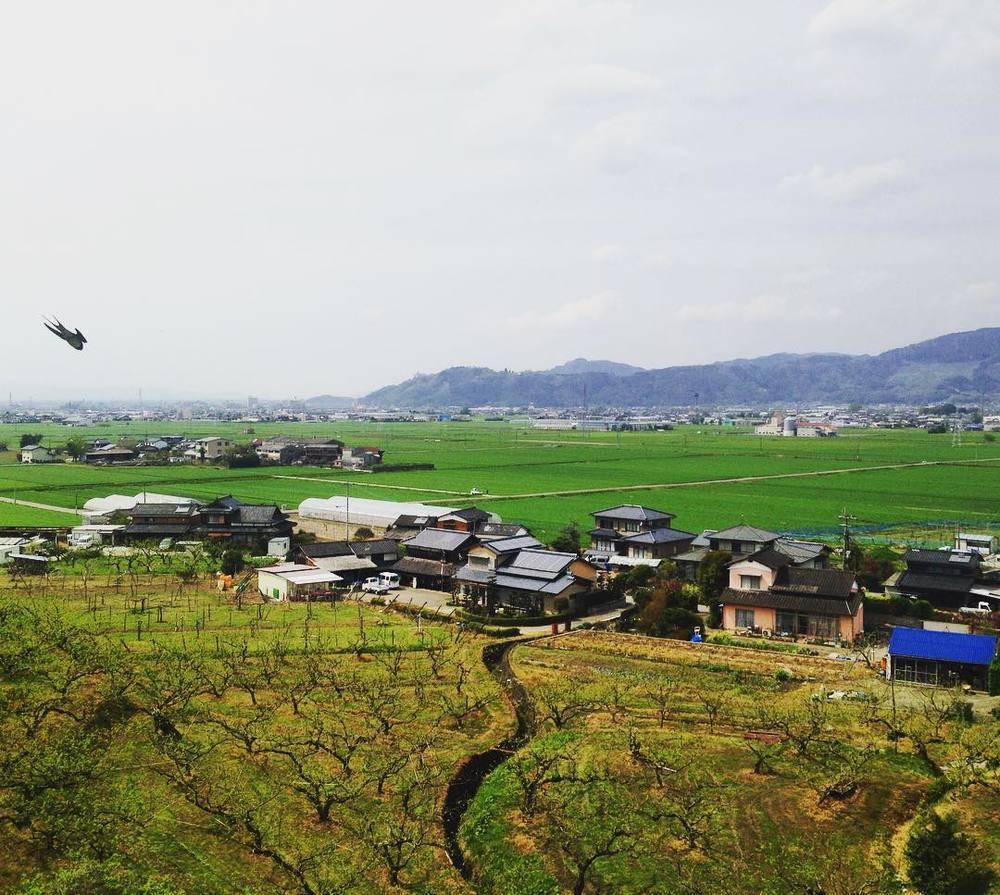 Ukiha countryside