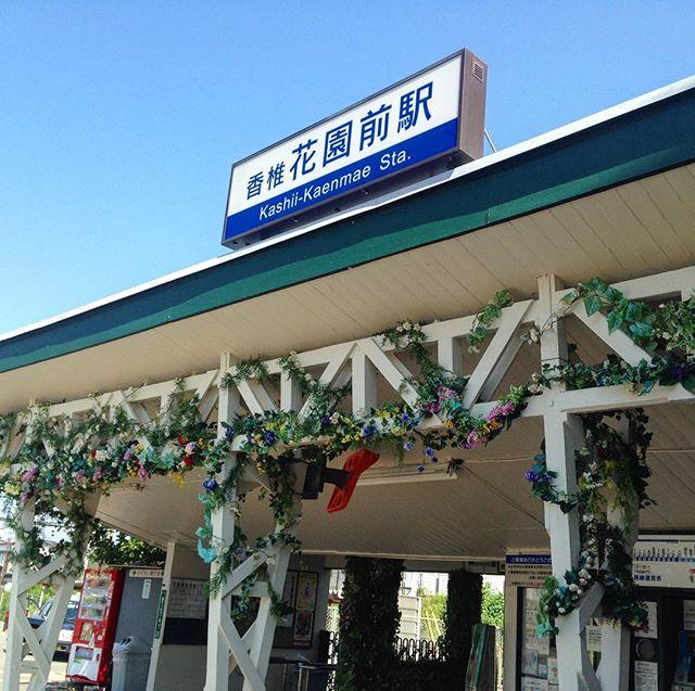 Cute station... 🌸🌼🌷#kashiikaen #floral #blueskies