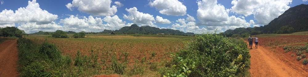 Vinales has a unique landscape and is absolutely gorgeous!