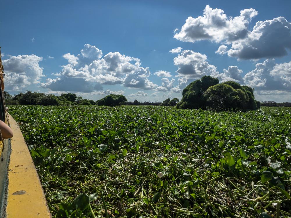 siem_reap_battambang_boat_cambodia-23.jpg