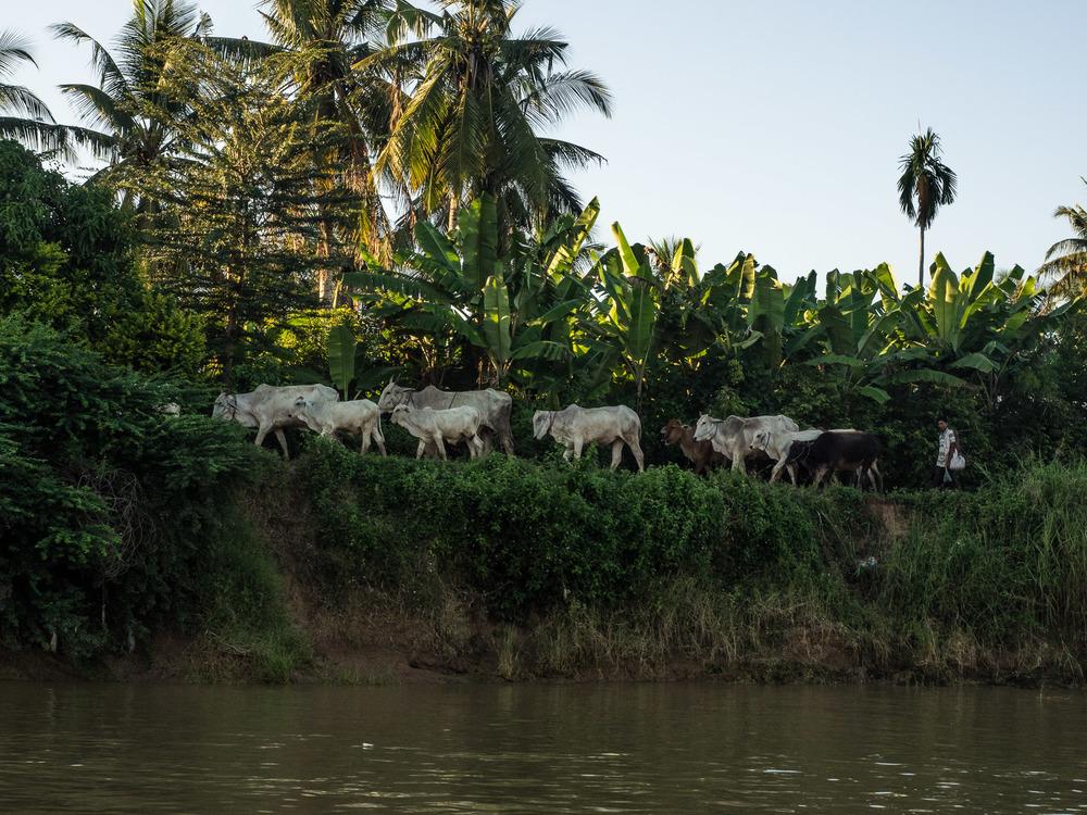 siem_reap_battambang_boat_cambodia-24.jpg