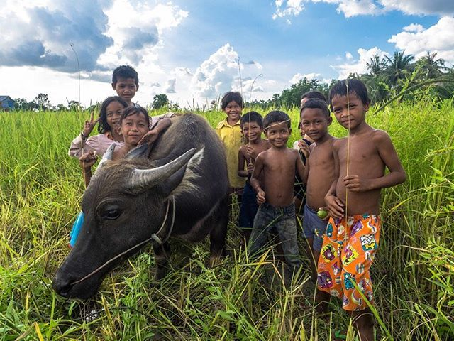 Children pose around a water buffalo near Siem Reap, Cambodia. #cambodia #siemreap #children #buffalo #travel #traveller #backpacking #southeastasia #portrait