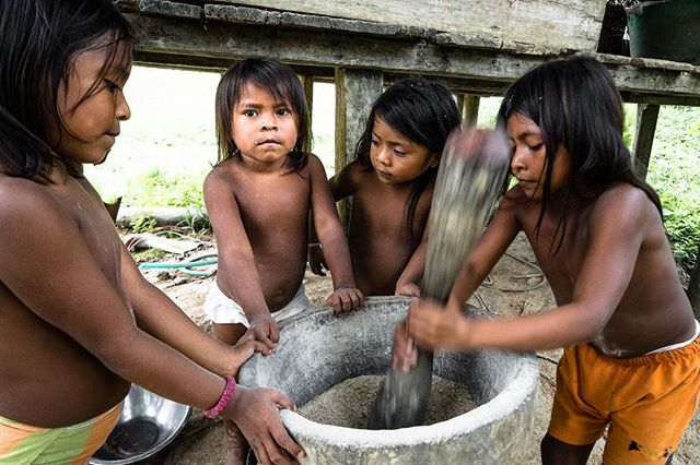 Young girls beat a rice-like crop in an indigenous village deep in the rainforests of choco, Colombia. The remote region is where Colombia's dense rainforest meets the Pacific Ocean and is only accessible by air or by sea.