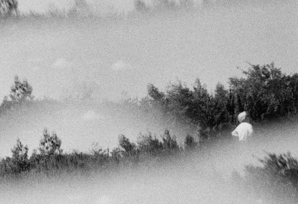 Alexis Dubourdieu - PRISMA - standing.jpg