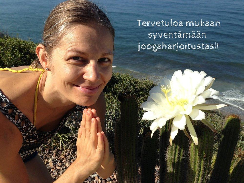 Jattamarie Rauhaluoto on opettanut joogaa vuodesta 2004 alkaen. Hänen asiantuntemuksensa ja kokemuksensa astangajoogasta on saavuttanut suosiota oppilaiden keskuudessa.