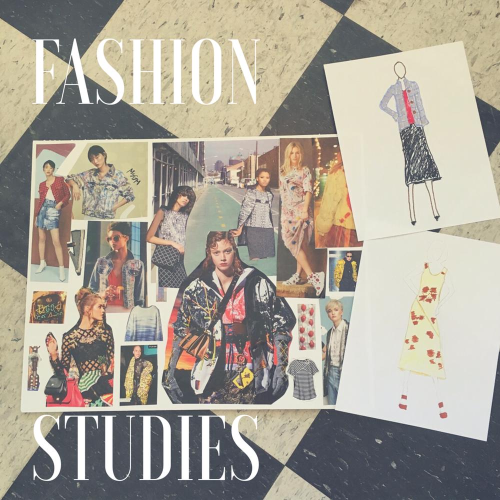Fashion studies(1).png