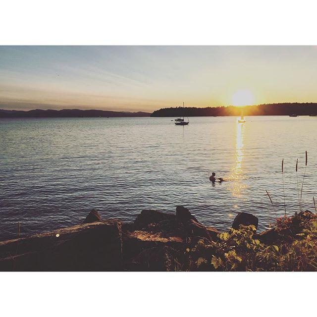 stranger swimming with his dog at sunset living my best life for me. . . . #burlingtonvt #lovermont #lakechamplain #btv #sunset