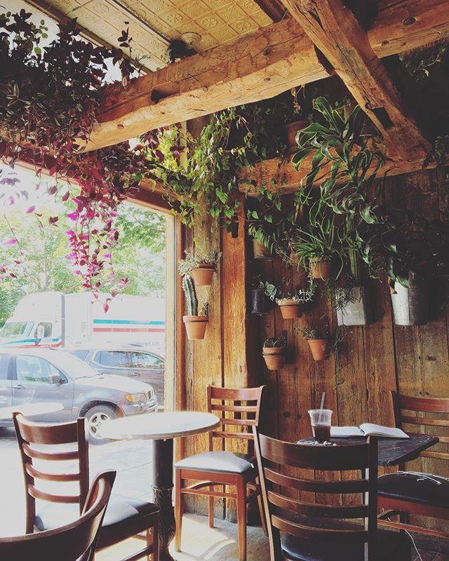 I found my new favorite place to work in Burlington 🌿🌵🌱🍃 . . . #burlingtonvt #freelance #plants #coffeeshop