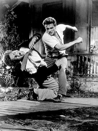 Brotherly love, as depicted in the excellent  East of Eden