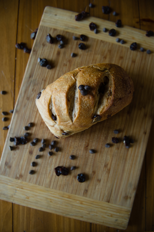 Ems+Sourdough+Bread,+Gormet+Bread,+Homemade+Bread,+Mandy+Leigh+Photography_20160309125634.jpg