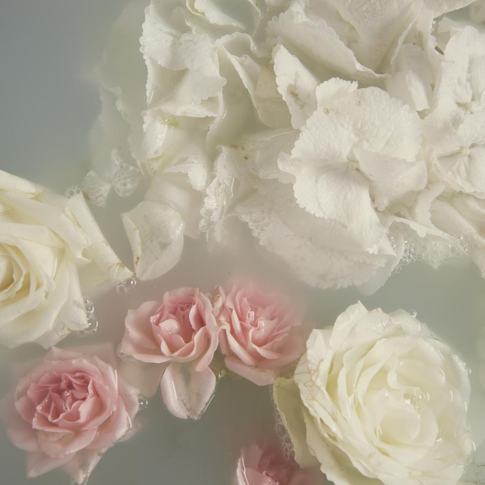 Flowers _1.jpg