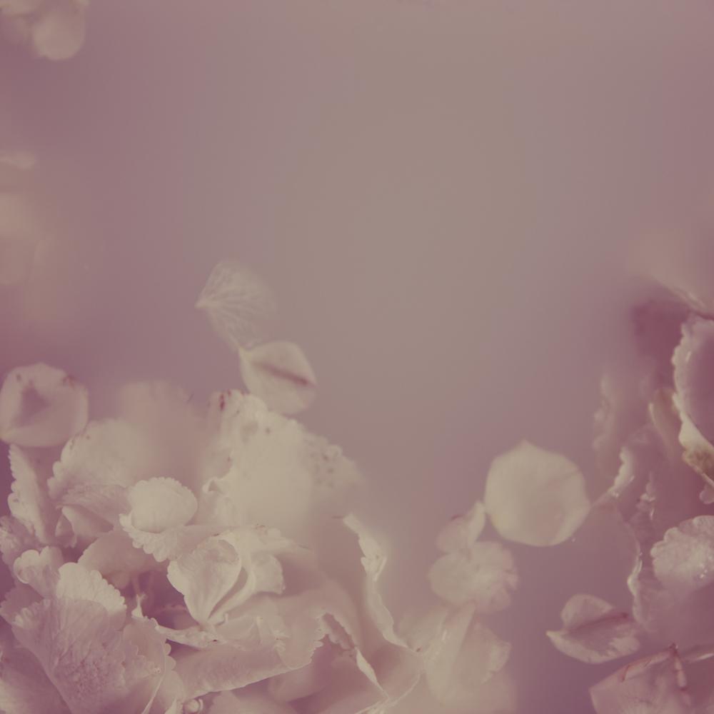 Flowers _2.jpg
