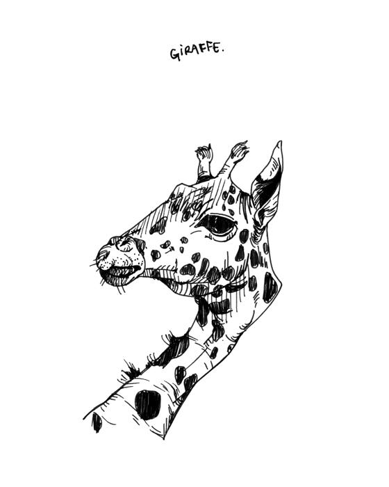 drawing022.jpg