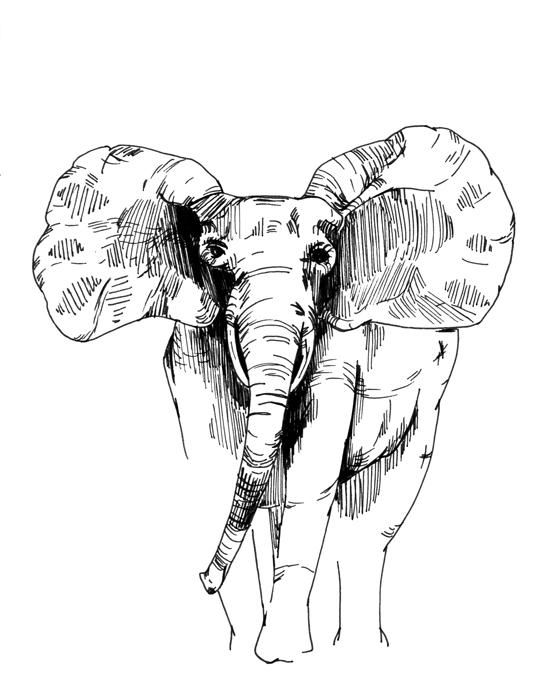 drawing023.jpg