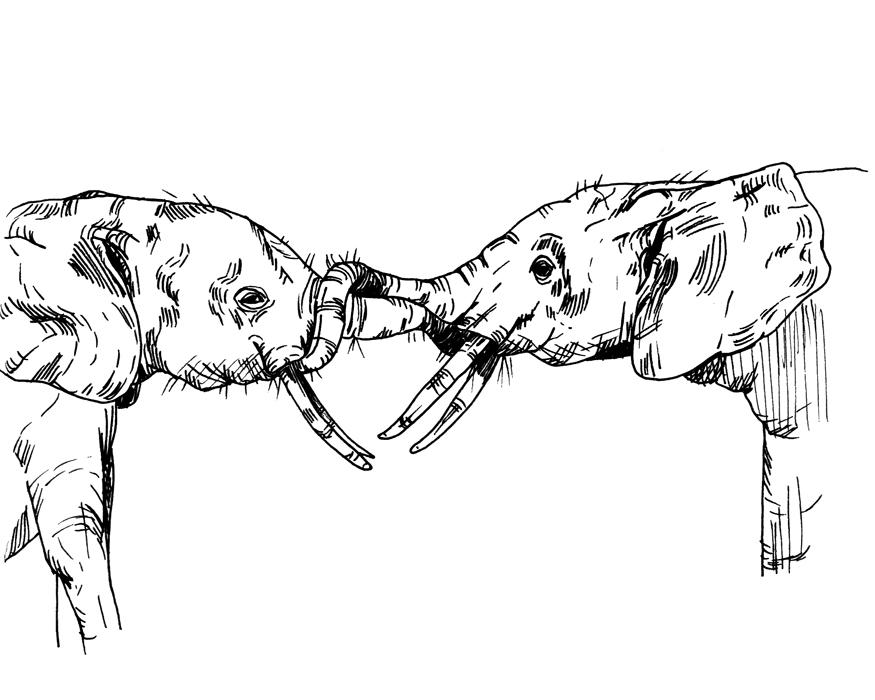 drawing024.jpg