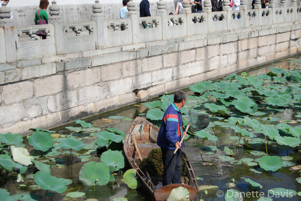 Summer Palace Pond Worker_0039.jpg