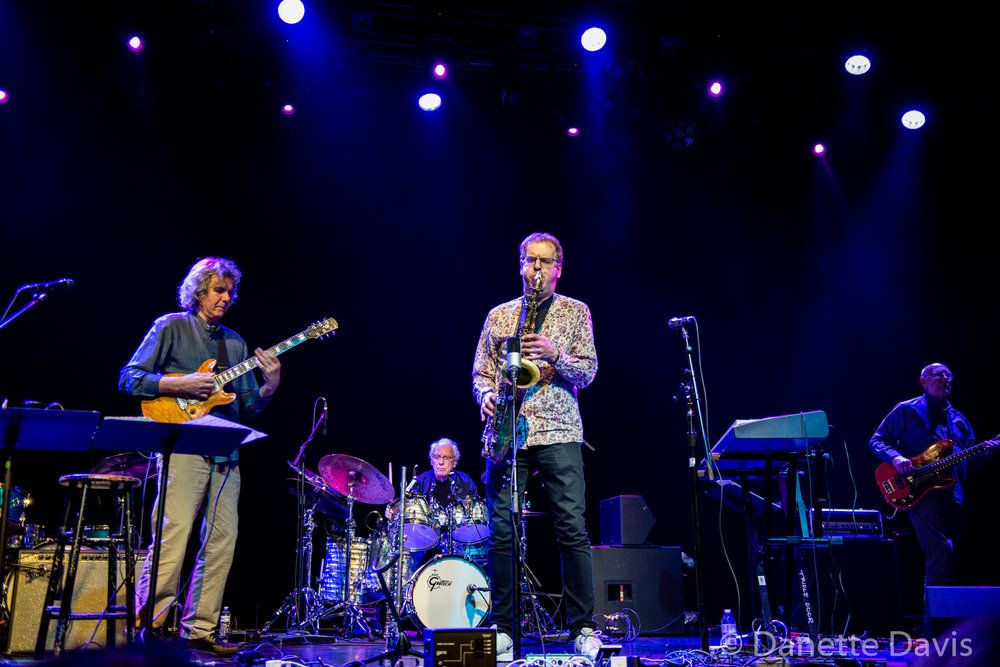 L-R: John Etheridge, John Marshall, Theo Travis,  and Roy Babbington, Soft Machine, Triple Door, Seattle, 2019