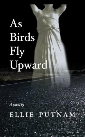 Available Sept. 2017 - As Birds Fly Upward is Ellie Putnam's debut novel.