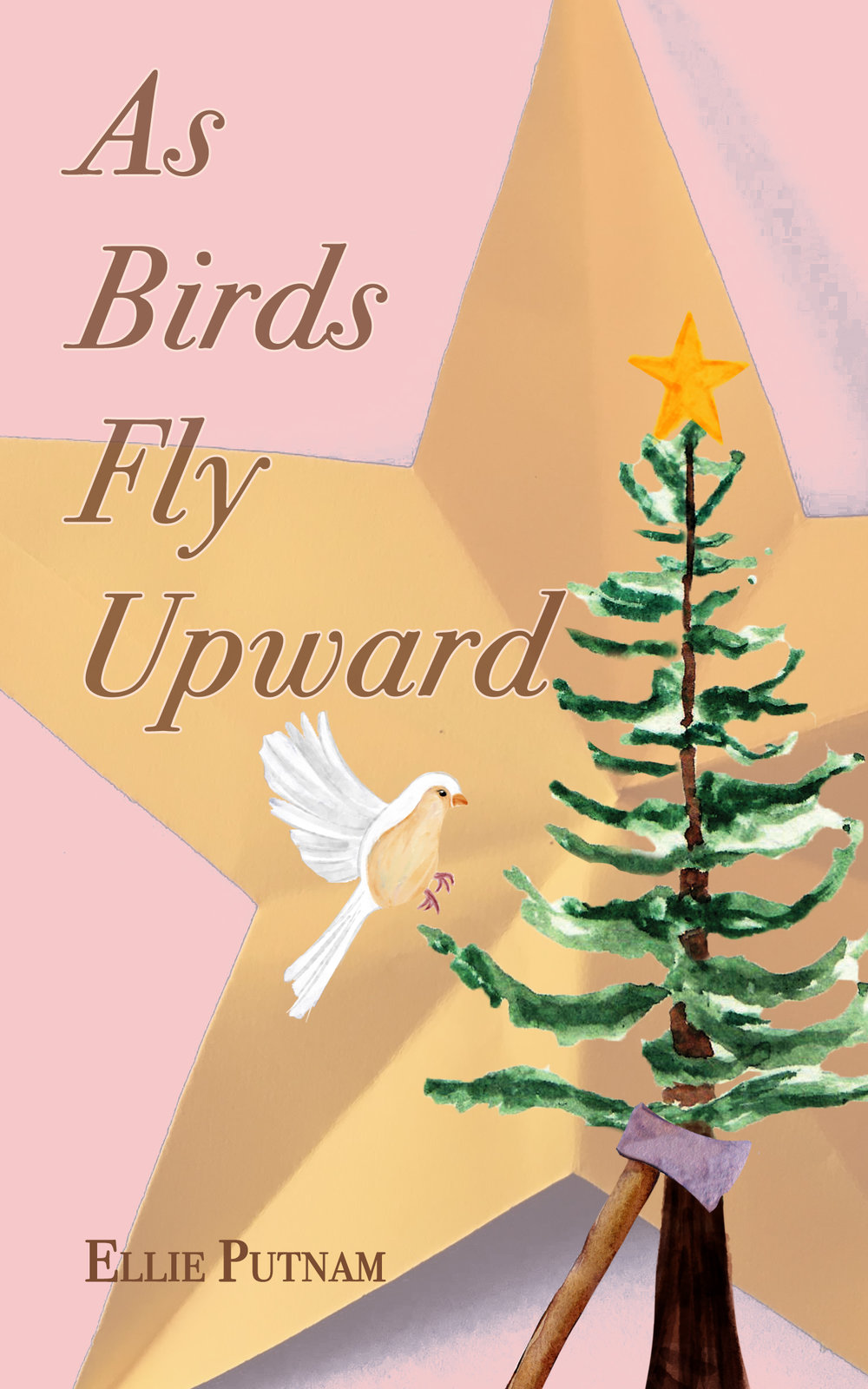 Thank you for reading. - As Birds Fly Upward is Ellie Putnam's debut novel.