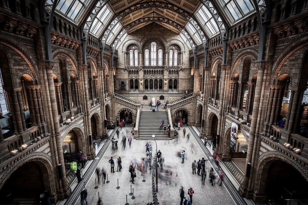 Natural History Museum - London, UK