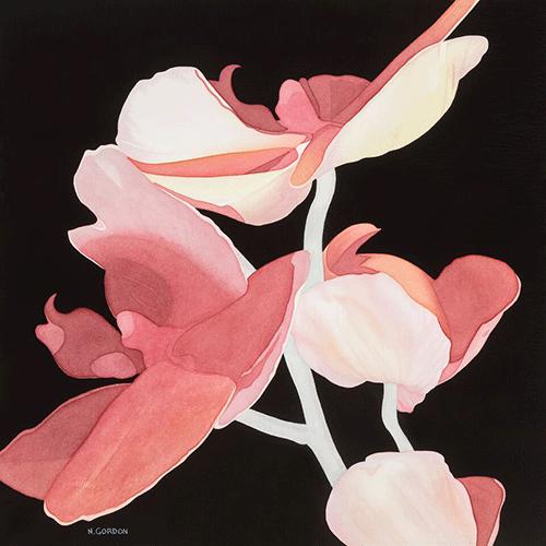 """Ascending Orchids 20"""" x 20"""" Original Watercolor"""