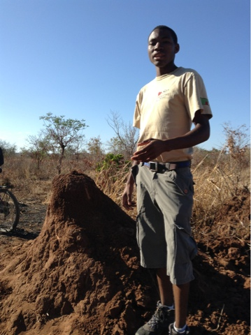 Our guide Patrick explaining that this type of termite mound is often used by the women & girls of the village.