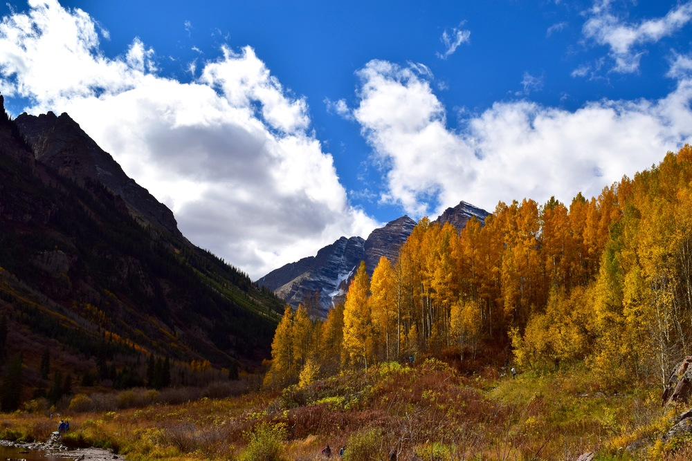 We missed peak Aspen weekend, as unbelievable as that may seem, and most of the trees had already dropped their leaves.