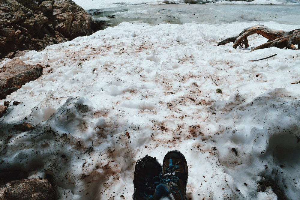 Hanging out in 2 feet of snow in June. I could get used to this sort of summer.