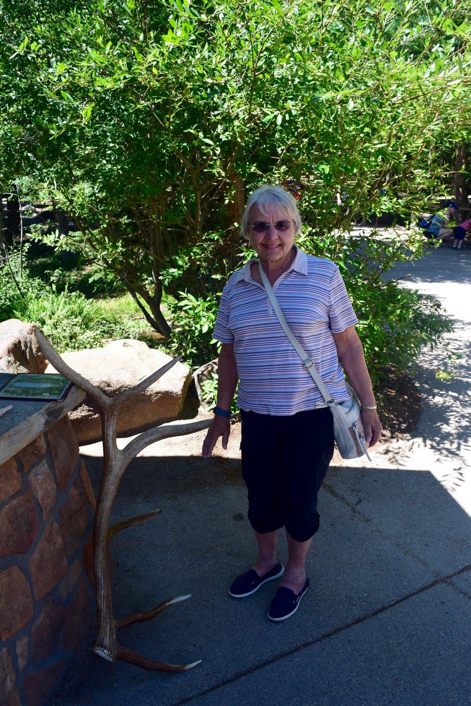 This elk antler was almost as tall as Grandmommie!