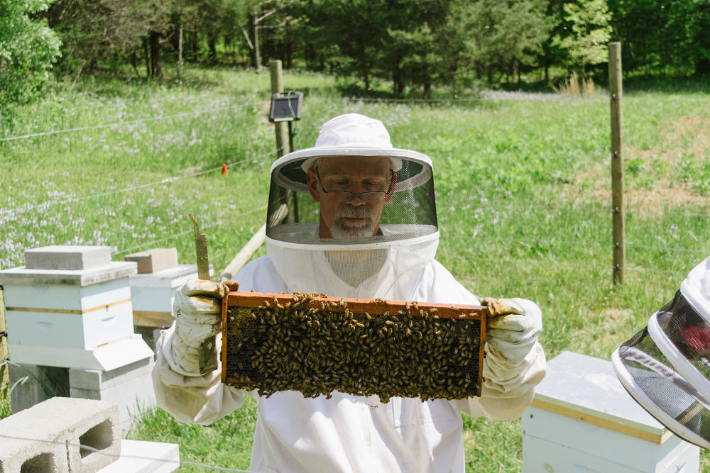 STILL NO QUEEN, but this frame gives you a better look at just  how many bees were in this particular hive. The tool in my dad's hand is used to loosen the frames from the box - everything is pretty sticky inside a beehive!