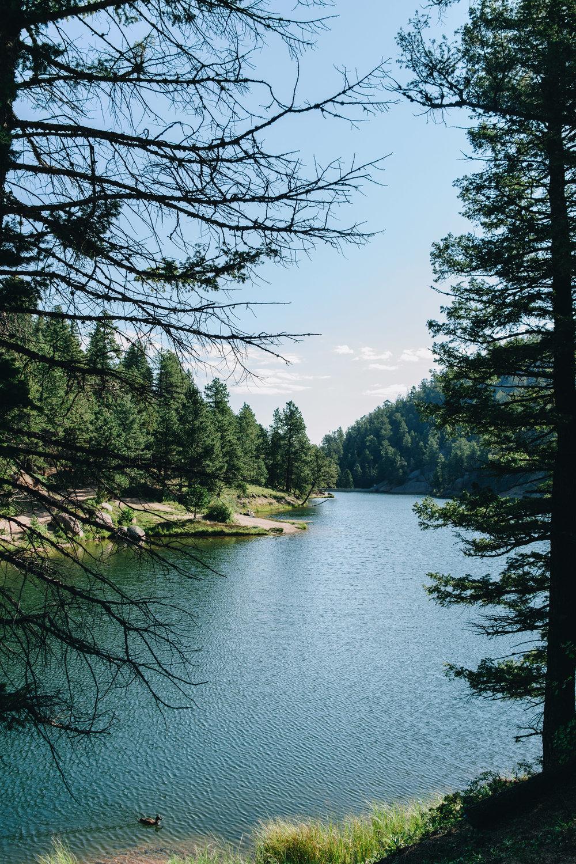 palmer lake-20.jpg
