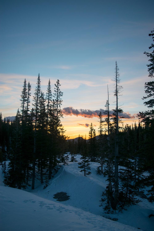 sunrise-18.jpg