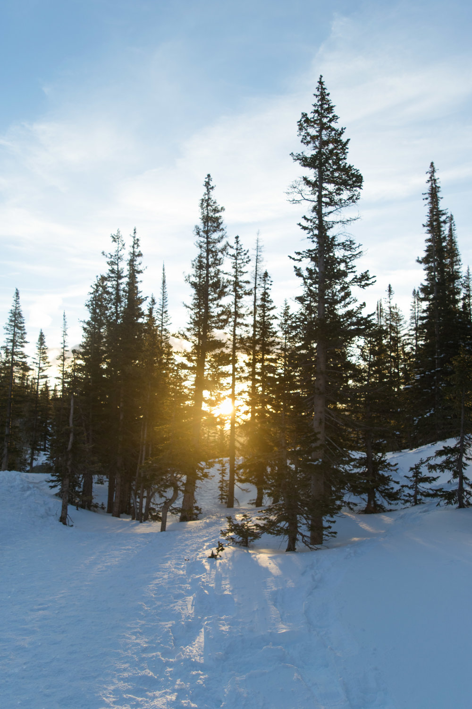 sunrise-36.jpg