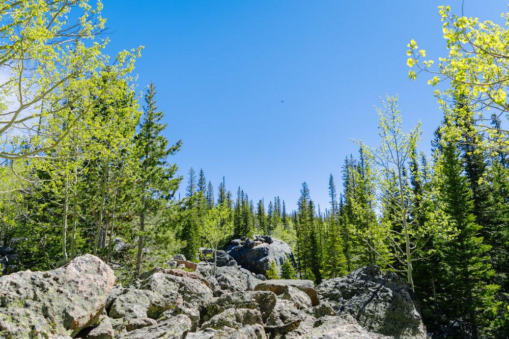 bierstadt lake-4.jpg