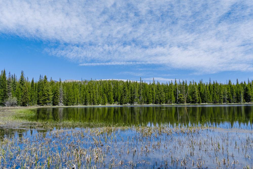 bierstadt lake-12.jpg