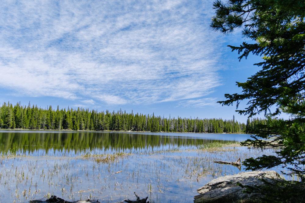 bierstadt lake-13.jpg