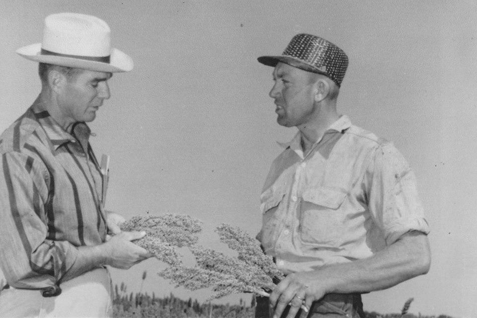 Leonard Finger, pictured on the right, holding stalks of milo