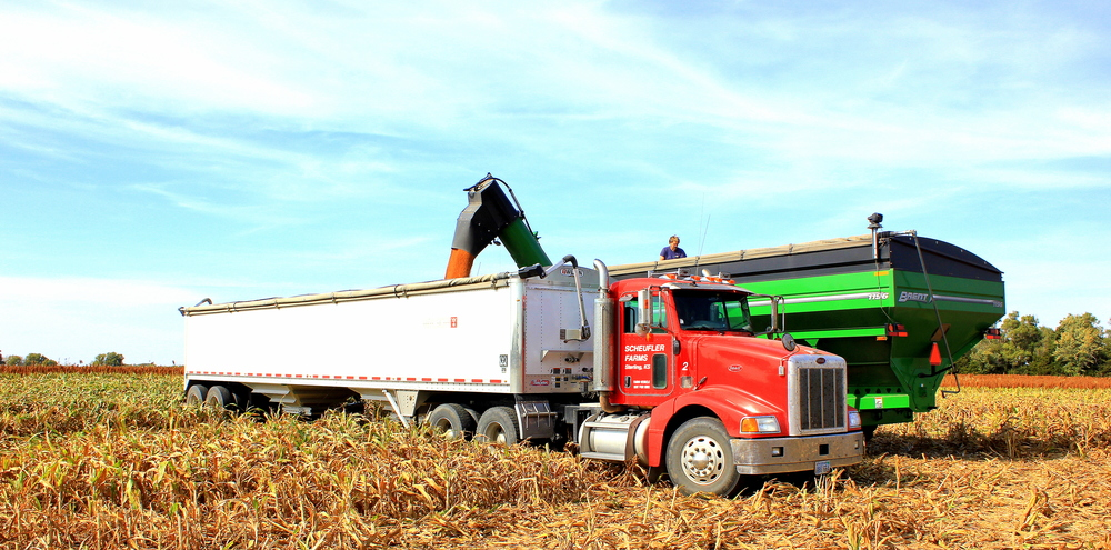 Grain cart filling the semi with milo
