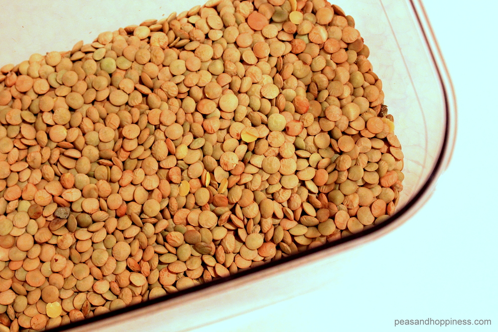 Lentils - Nitrogen from Peas and Hoppiness - www.peasandhoppiness.com