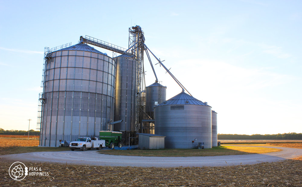 Grain handling facility at Scheufler Farms. During harvest, Dad hauls grain here instead of to the elevator to avoid the long lines, then Dan hauls grain from here to the elevators all winter long.