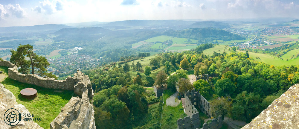 View from Hohentwiel Castle in Singen, Germany
