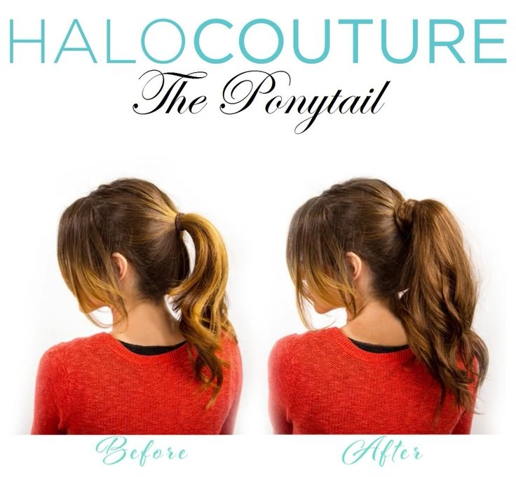 ponytail 2.jpeg
