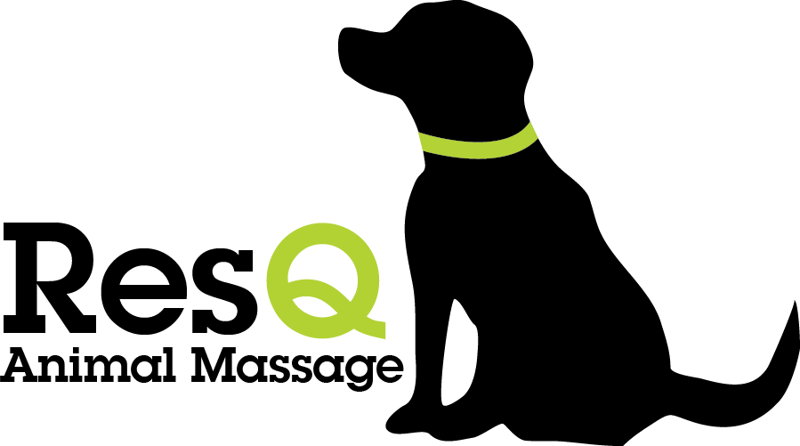 ResQ Animal Massage