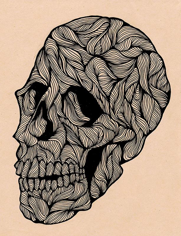 2014_Linear.Skull.JPG