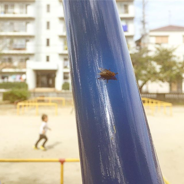 Parkfly #UnbagAbug